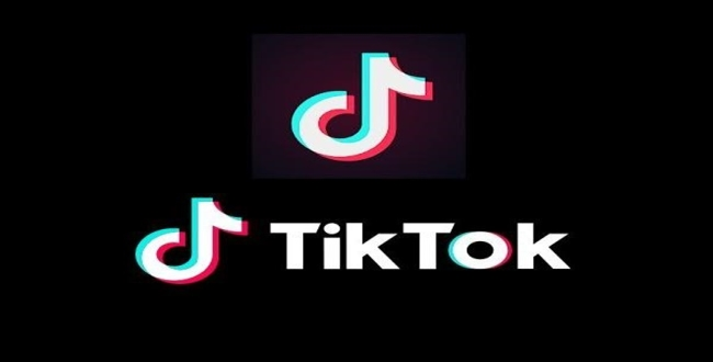 Japan company tries to buy indias tik tok company
