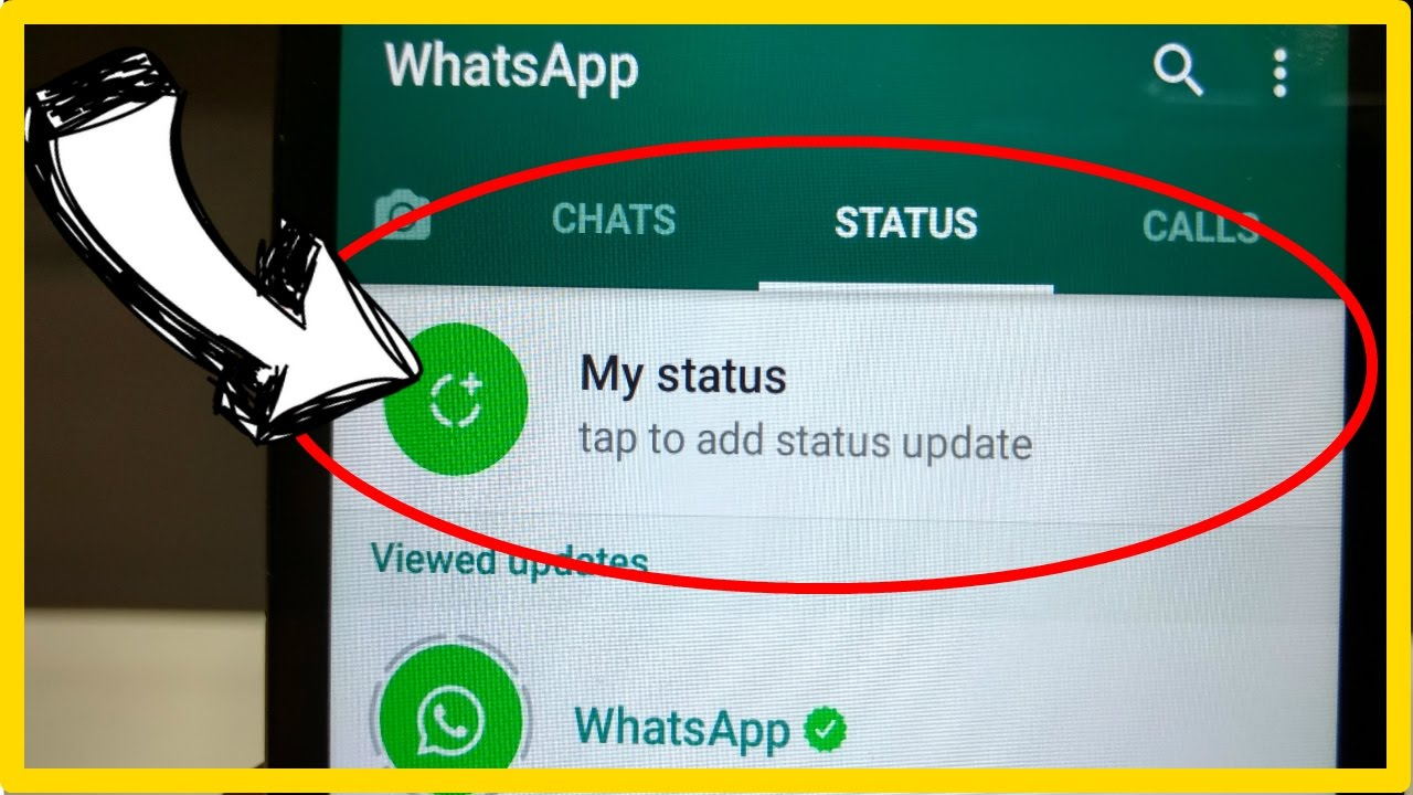how to set whatsapp status க்கான பட முடிவு