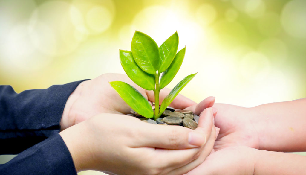 plant nurturingக்கான பட முடிவுகள்