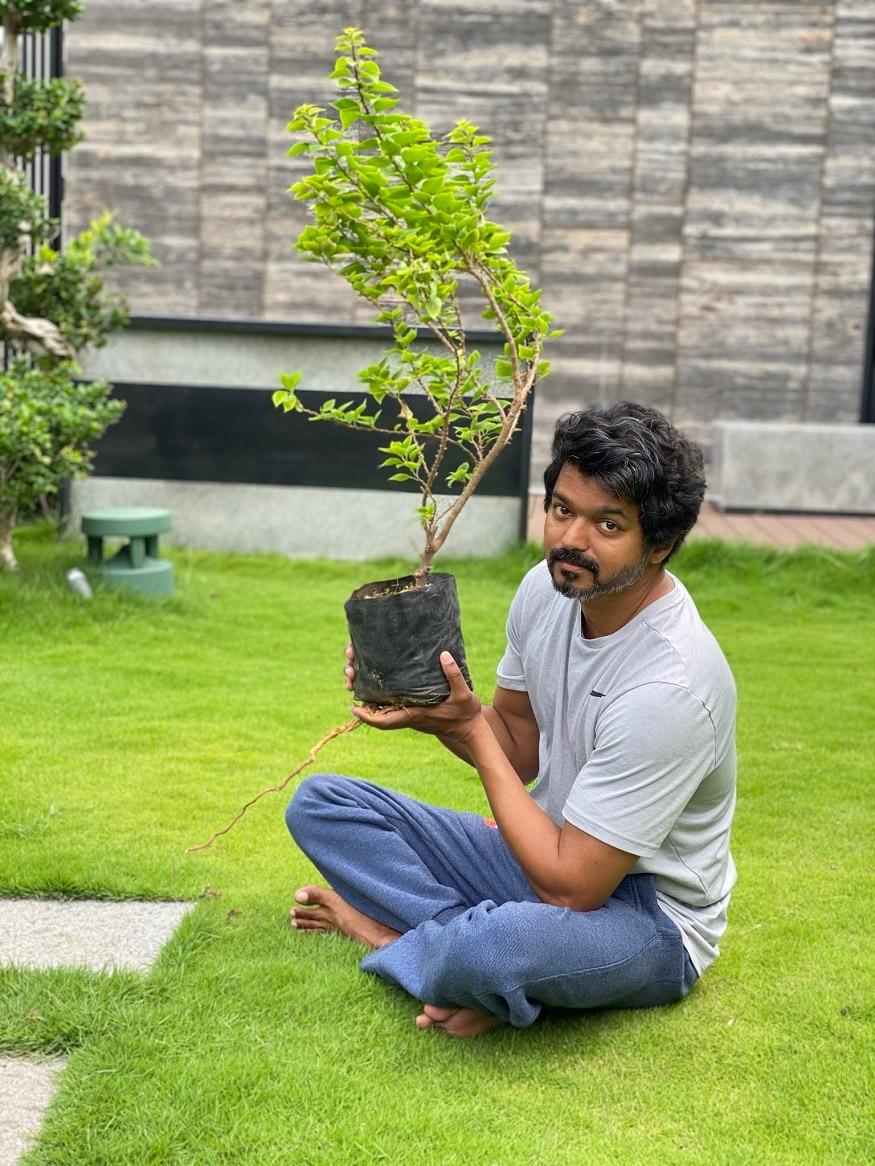 இதையடுத்து நடிகர் விஜய் மகேஷ் பாபுவின் சவாலை ஏற்று தனது வீட்டில் மரக்கன்றுகளை நட்டுள்ளார்.