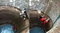 women saved dog from well
