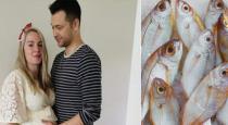 fish-alex