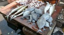 malaiyala-actor-vinod-kavoor-sales-fish-in-corono-pande